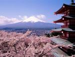 Извержение вулкана может стереть с лица Земли Японию